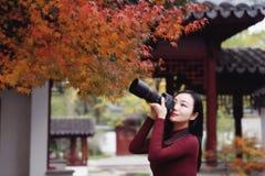 Fotógrafo da mulher na natureza no parque do outono fotografia de stock royalty free