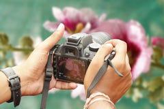 Fotógrafo da natureza que toma a foto usando a câmera do slr foto de stock royalty free