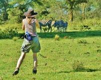 Fotógrafo de la mujer joven en África que toma la foto de cebras cerca imágenes de archivo libres de regalías
