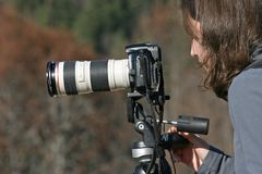 Fotógrafo de la naturaleza imagenes de archivo