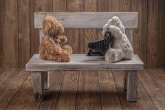 Fotógrafo de los osos de peluche de la felpa Fotos de archivo libres de regalías