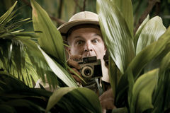 Fotógrafo del explorador que oculta en la vegetación Imagen de archivo libre de regalías