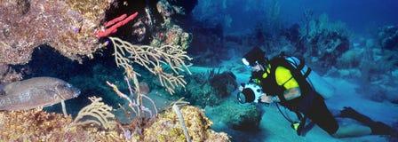 Fotógrafo e peixes subaquáticos Fotografia de Stock