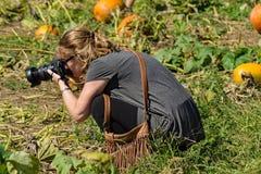 Fotógrafo em um remendo da abóbora Fotos de Stock