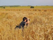 Fotógrafo en campo de maíz Imagen de archivo libre de regalías