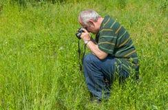 Fotógrafo maduro que toma uma foto da borboleta azul comum Fotos de Stock Royalty Free