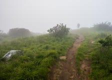 Fotógrafo na névoa em Jane Bald fotos de stock