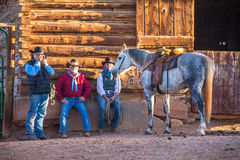 Fotógrafo Photographing Horse imagem de stock