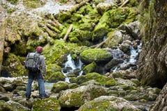Fotógrafo profissional da natureza Imagem de Stock Royalty Free