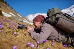 Fotógrafo profissional da natureza Imagem de Stock