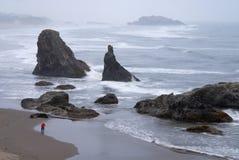 Fotógrafo que toma el cuadro de rocas en la costa de Oregon Imagen de archivo libre de regalías