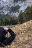Fotógrafo que toma a foto de um alce Imagens de Stock Royalty Free