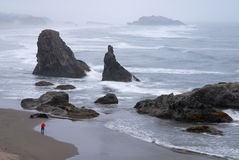 Fotógrafo que toma o retrato das rochas na costa de Oregon Imagem de Stock Royalty Free