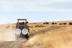 Fotógrafo Safari Vehicle en la impulsión del juego fotografía de archivo