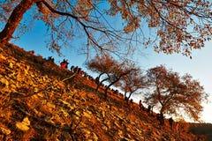 Fotógrafos en la colina Fotografía de archivo libre de regalías