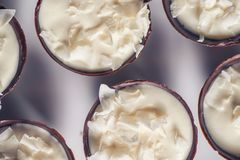 FOT填装用椰子奶油和椰子瓣的巧克力甜点心在上面,产品摄影法式蛋糕铺 免版税库存照片