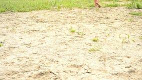 Fot av en kvinna som går på sand lager videofilmer