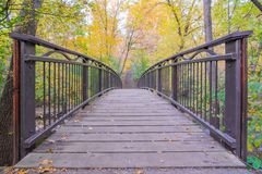 Fot- bro över liten vik i Minneapolis - i nedgång med höstfärger i trädsidor - gulingar och gräsplaner royaltyfri foto