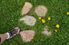 Fot för kvinna` s på grönt gräs, stenar, maskrosor Royaltyfria Bilder