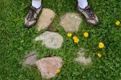 Fot för kvinna` s på stenar, maskrosor Arkivfoton