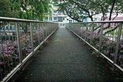 Fot- gångbana med rosa blommor Royaltyfri Foto