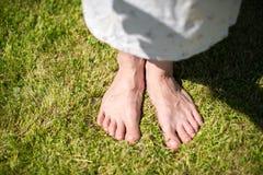 fot gräs Royaltyfria Foton