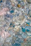 Fot i klart vatten Royaltyfri Bild