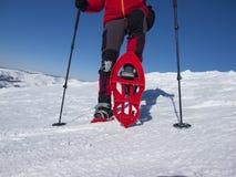 Fot i snöskor fotografering för bildbyråer