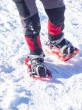 Fot i snöskor royaltyfria foton