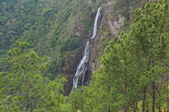1000 fot nedgångar - vattenfall i Belize Arkivbilder