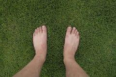Fot på gräsmatta royaltyfria bilder