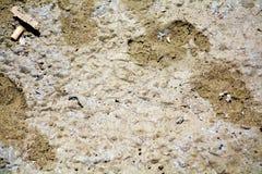 Fot på sand, abstrakt bakgrund royaltyfria bilder