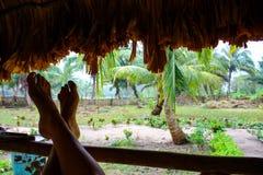 Fot som lutar mot ett staket i en djungelkoja royaltyfri fotografi