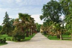 Fot- väg i arboretumen av den Spa staden solig dagsommar Arkivbild