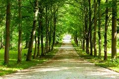 Fot- Walkway Royaltyfri Foto