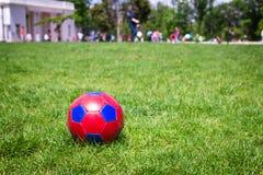 Fotball rojo y azul en hierba Fotos de archivo libres de regalías