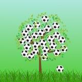 fotboll för bollfotbollgräs Royaltyfri Fotografi