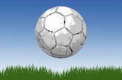 fotboll för bollfotbollgräs Arkivbilder