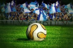 fotboll för bollgräsgreen Royaltyfri Bild