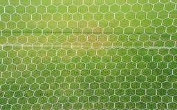 Fotboll förtjänar med bakgrund för grönt gräs arkivfoton