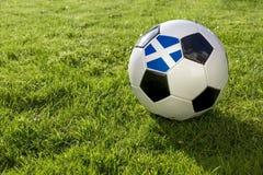 Fotboll med flaggan arkivbild