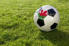 Fotboll med flaggan arkivfoto
