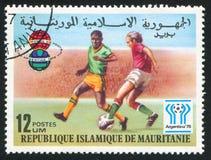 Fotboll och emblem arkivbilder