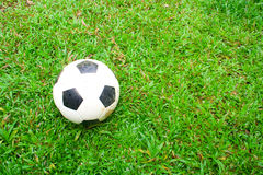 Fotboll på grass.2 Royaltyfri Bild