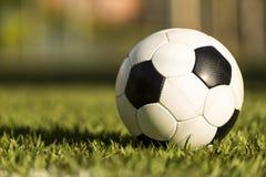 Fotbollboll på ett gräsfält royaltyfri bild