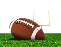 Fotbollboll på gräs med målstolpen Royaltyfri Foto