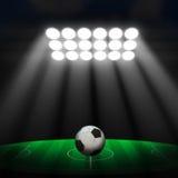 Fotbollboll på grön stadion Royaltyfri Foto