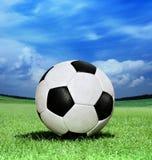 Fotbollboll på grönt gräs Arkivbilder