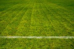 Fotbollfält Arkivbilder