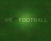 fotbollgräsförälskelse Royaltyfri Bild